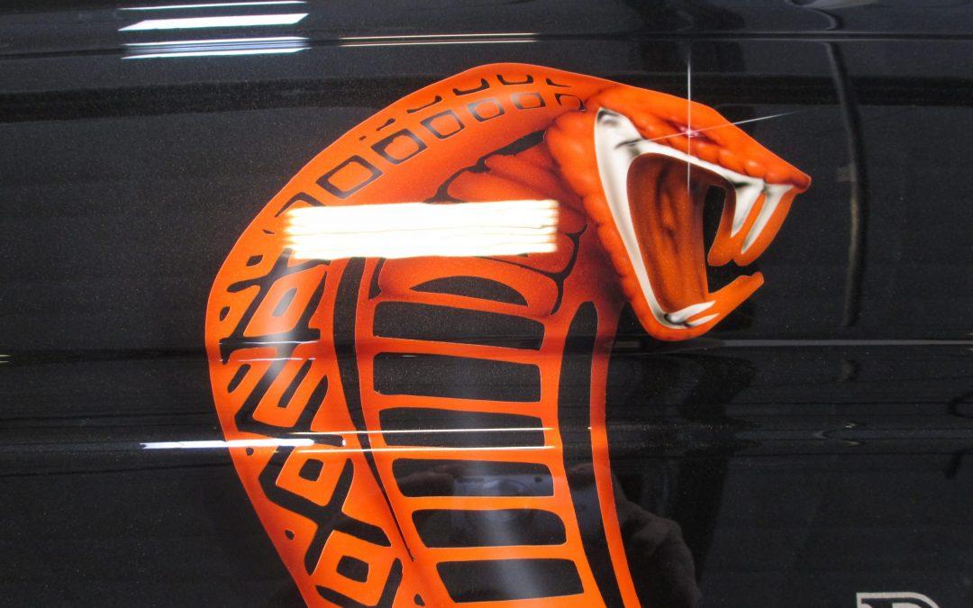 Custom Painted Ford Raptor